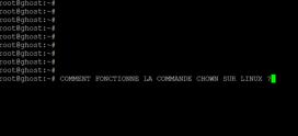 Comment on peut utiliser la commande chown sur un serveur ou PC Linux