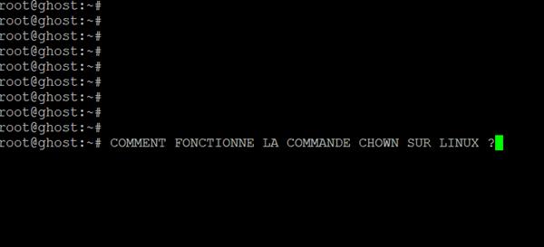Changer le propriétaire de groupe ou du fichier avec chown sur linux