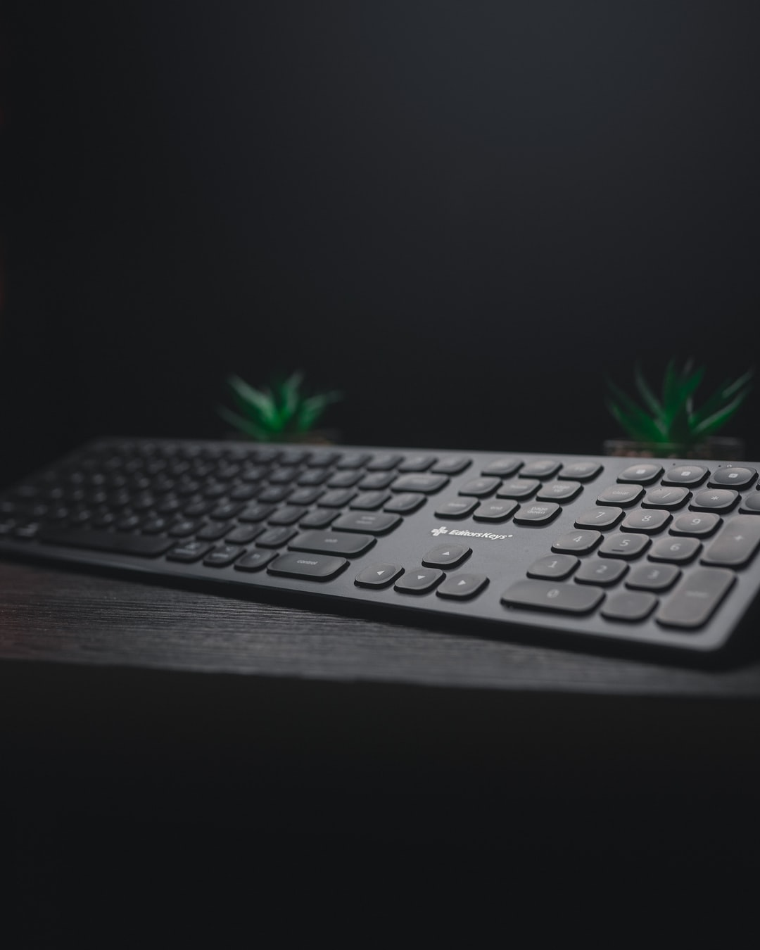 micro entreprise informatique
