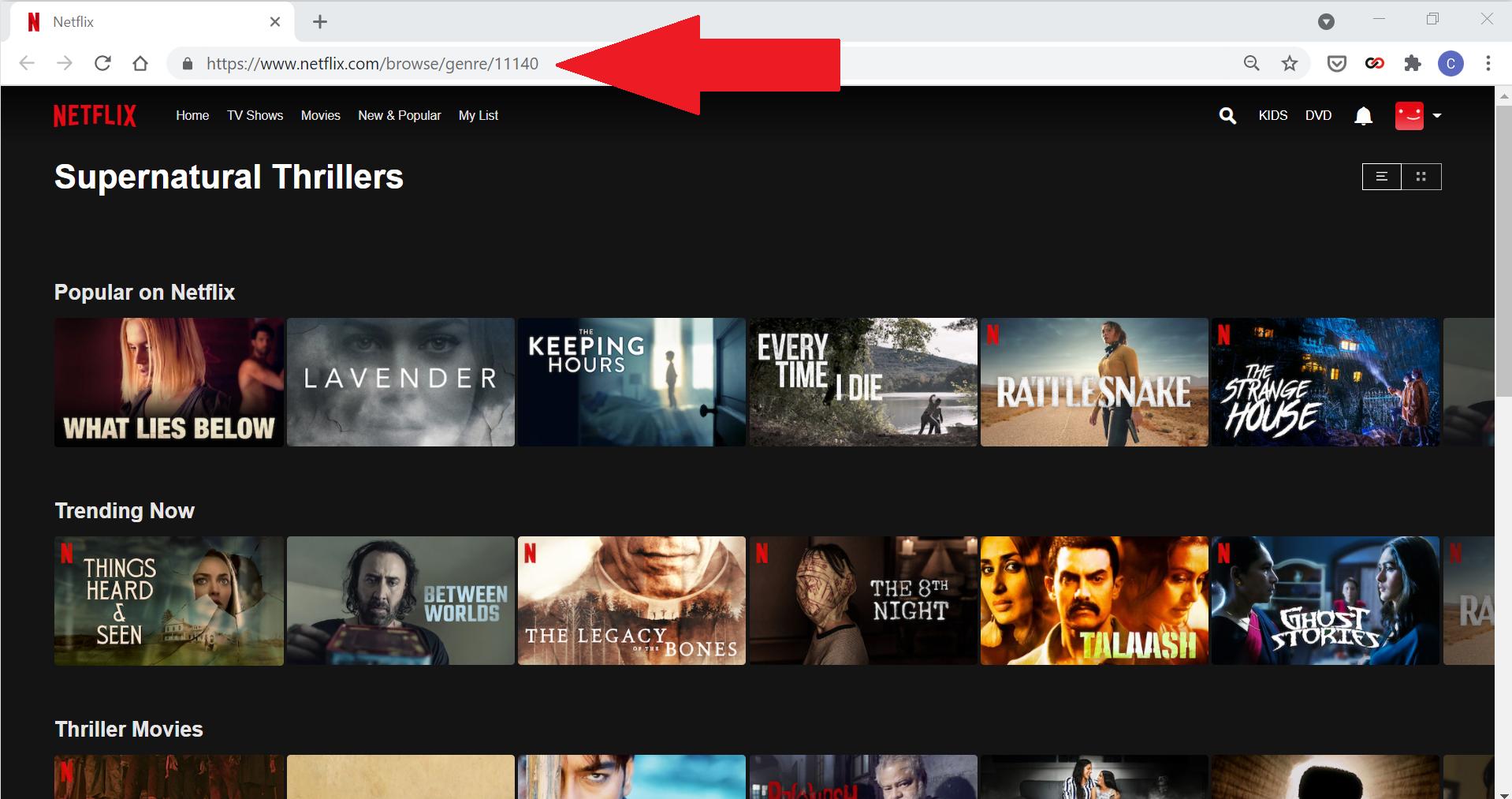Parcourir les catégories cachées de Netflix