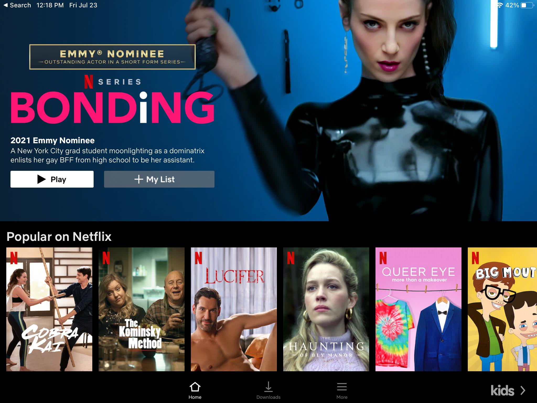 capture d'écran de la page de destination emmy de netflix sur iPad