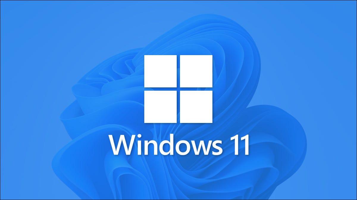 Logo Windows 11 avec papier peint